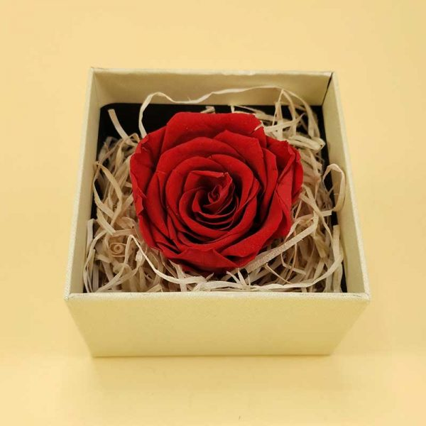 Poklon kutija Crvena ruža sa parfemom box 00089-1